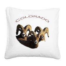 Colorado Square Canvas Pillow