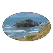 Pacific Coast 1Jan Decal