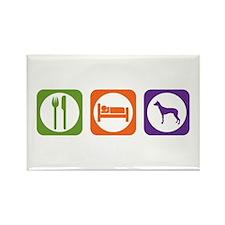 Eat Sleep PIO Rectangle Magnet (10 pack)