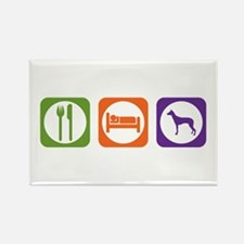 Eat Sleep PIO Rectangle Magnet (10 pack)