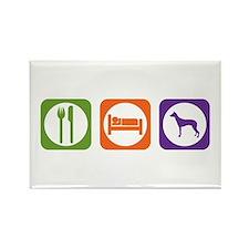 Eat Sleep PIO Rectangle Magnet