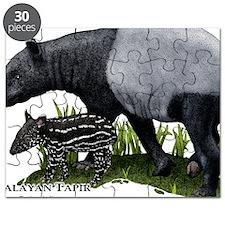Malayan Tapir and Young Puzzle