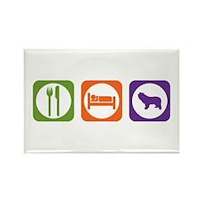 Eat Sleep Sheepdog Rectangle Magnet (10 pack)
