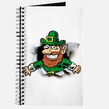 Irish Inside (1) Journal