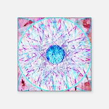 "Mandala Spirit Square Sticker 3"" x 3"""
