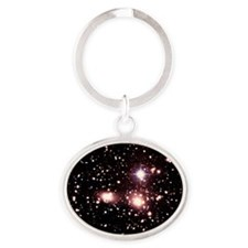 Optical image of galaxies in the Com Oval Keychain