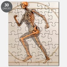 science human skeleton puzzles, science human skeleton jigsaw, Skeleton
