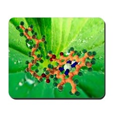 Chlorophyll molecule Mousepad