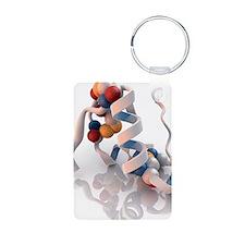 Insulin molecule Keychains