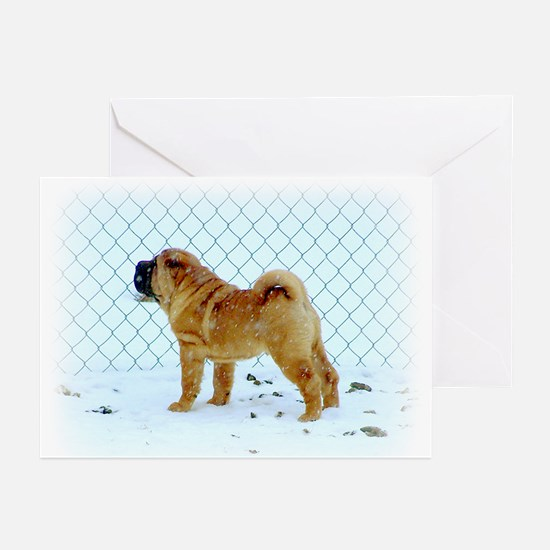 Shar Pei Greeting Cards (Pk of 10)
