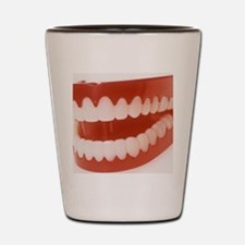 Toy teeth Shot Glass