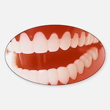 Toy teeth Decal