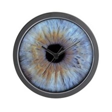 The iris of the eye Wall Clock