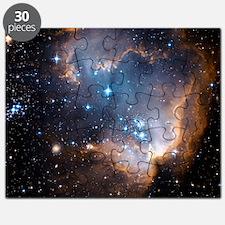 Starbirth region NGC 602 Puzzle