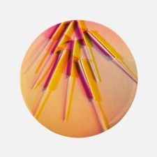 "View of several acupuncture needles 3.5"" Button"