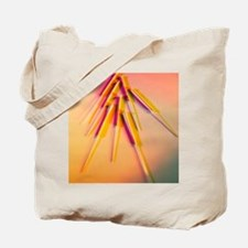 View of several acupuncture needles Tote Bag