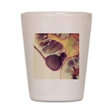 X-ray of appendix Shot Glass