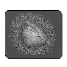 Sleeping squirrel Mousepad