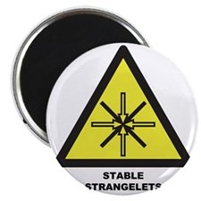 Stable Strangelets Magnet