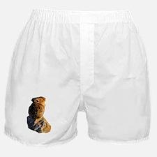 Sunset Pika Boxer Shorts