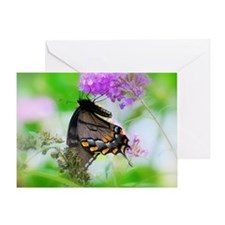 Swallowtail Butterfly on Butterfly B Greeting Card