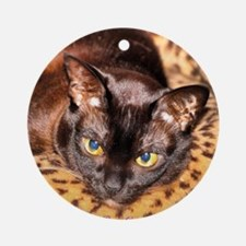 Burmese on Leopard Bed Round Ornament