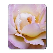 Pink Rose Large Poster Mousepad