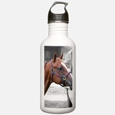 The Show Horse Water Bottle