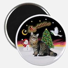NightFlight-Bobtail Cat Magnet