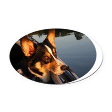 Eyes of a Star Oval Car Magnet