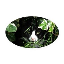 Can You See Me Oval Car Magnet