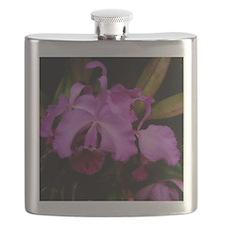 Longwood Orchid Flask