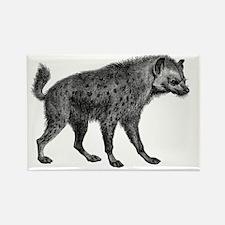 Vintage Hyena Rectangle Magnet