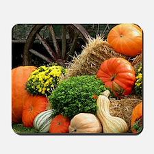 Pumpkins, Fall Themed, Mousepad