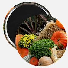 Pumpkins, Fall Themed, Magnet