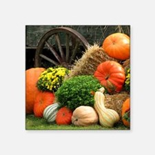 "Pumpkins, Fall Themed, Square Sticker 3"" x 3"""