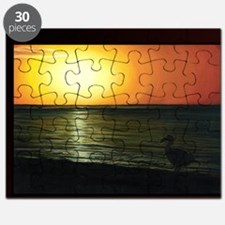 The Last of the Dodos Puzzle