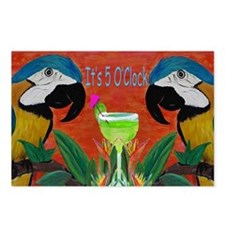 Its 5 OClock Parrots Postcards (Package of 8)