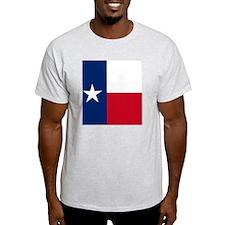 16_pillow2 T-Shirt