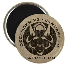 Vintage Capricorn Magnet