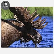 Cute Moose Puzzle