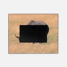 Rhinoceros Picture Frame