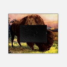 Vintage Bison Painting Picture Frame