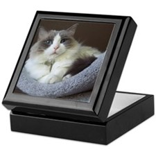 Ragdoll cat (blue bicolor) Keepsake Box