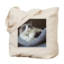 Ragdoll cat (blue bicolor) Tote Bag