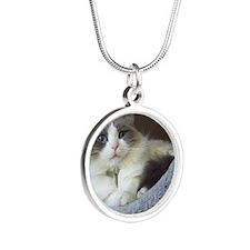 Ragdoll cat (blue bicolor) Silver Round Necklace