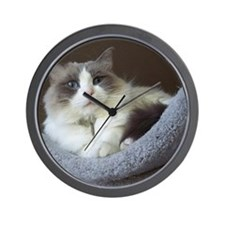Ragdoll cat (blue bicolor) Wall Clock