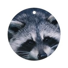 Cute Raccoon Round Ornament