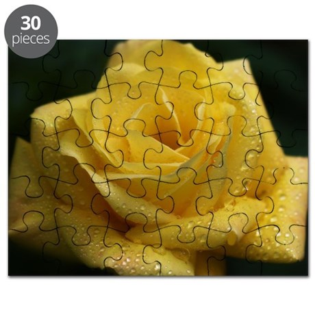 The Yellow Rose Puzzle