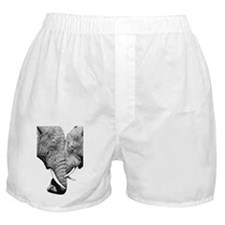 African Elephants Wall Decal Boxer Shorts